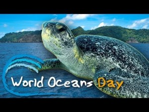 Observe World Oceans Day this Sunday, June 9th!